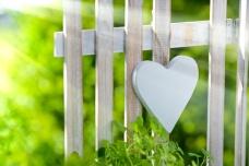 Herz am Gartenzaun