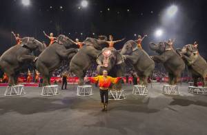 ringling-bros-and-barnum-and-bailey-circus-tickets-jpg-870x570_q70_crop-smart_upscale